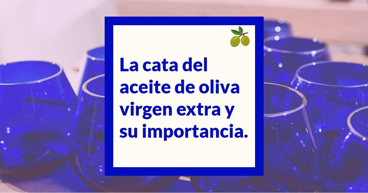 la importancia de la cata de aceite de oliva virgen extra